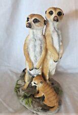 "Meerkats Family Figurine by Veronese 9"""