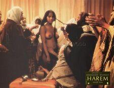 SEXY EXOTIC GIRL HAREM   1985 VINTAGE LOBBY CARD ORIGINAL
