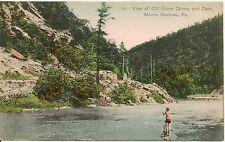 Old Stone Quarry and Dam Mauns Narrows PA Postcard