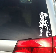 American Staffordshire Terrier Dog vinyl decal,Pit bull, catch dog,puppy,sm,