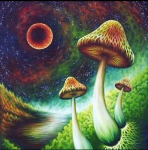 "2"" Psychedelic Mushroom 🍄 Sticker Shroom Hippie Colorful Trippy Peace Art"