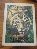 TERRELL TIGERS High School Texas 1975 Yearbook Annual HS Vintage