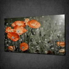 BEAUTIFUL POPPIES FLOWERS CANVAS WALL ART PRINT PICTURE READY TO HANG