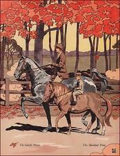 SADDLE HORSE & SHETLAND PONY by James Cannon print, authentic 1938