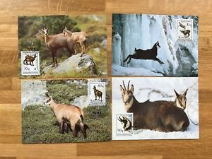 ALBANIA 1990 PHQ MAXI CARDS x 4 WWF CHAMOIS GOATS