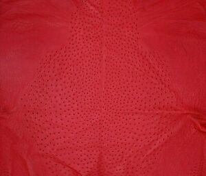 Ostrich Leather Hide, Scarlet Red Color (%100 Genuine Natural skin)