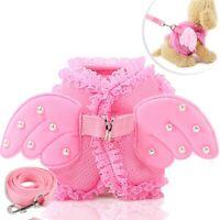 Angels Wing Kleine Hundeweste Geschirrleine für Mädchen Pet Puppy Cut Pomeranian