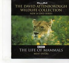 (FR322) The Mail, David Attenborough, The Life Of Mammals Meat Eaters - 2007 DVD
