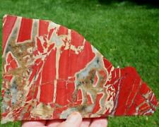 """""""NEW"""" RED MONUMENT JASPER SLAB  225 grams agate/Rock/Cab/rough/mineral"""