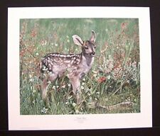 """Charles Frace Signed and Numbered Print  """"Fresh Start"""" Mule Deer Fawn"""