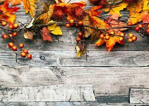 4x Tischsets / Platzmatten / Platzset abwaschbar / Motiv 'Der Herbst ist da!'