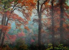 3D Lenticular Poster - Serene Peaceful FOREST Scene - 10x14 Print - Scenic