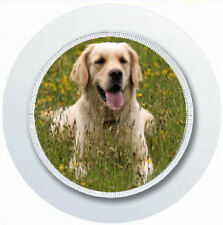 Golden Retriver de coche de perro impuesto Portadisco Reutilizable
