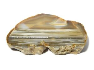 """Vintage Large Piece of Polished Brown and White Agate Paperweight 5"""" x 3"""""""