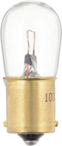 Trunk Light  Philips  1003B2