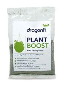 Dragonfli Trichoderma Harzianum T22 Granules Premium Plant Boost