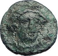 GELA in Sicily 339BC Ancient Greek  Coin Demeter facing River-god Gelas  i74125