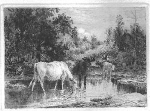Peter Moran American Artist Original Etching Untitled Cows