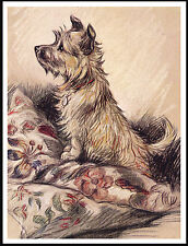 CAIRN TERRIER CUTE DOG ON A PILE OF CUSHON GREAT VINTAGE STYLE DOG PRINT POSTER
