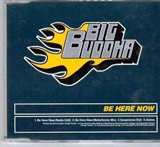 (DY239) Big Buddha, Be Here Now - 1997 CD