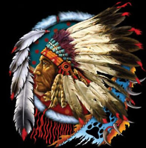Native American Indian Chief  Dreamcatcher Tee T-Shirt New