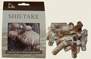 Shiitake - Mycelium - Fungi Forest - Grow Your Own Mushrooms - Contains 20 Piece