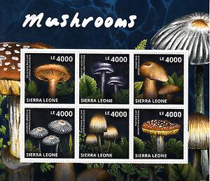 Sierra Leone 2013 MNH Mushrooms 6v M/S Nature Milk Cap Penny Bun Umbrella