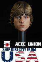 """1/6 Luke Skywalker Star Wars Head Sculpt For 12"""" Hot Toys Figure *U.S.A. SELLER*"""