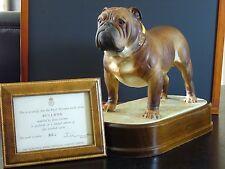 Royal Worcester Bulldog - limited edition by Doris Lindner 1968 (Model # 351)