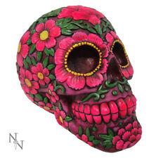 Spardose Totenkopf mit Blüten Mystik Mittelalter Gothic Skull Money Box Schädel