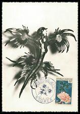 Nueva Caledonia Mk 1959 acuario glaucus Anemone Carte maximum card mc cm ay55