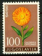 Jugoslavia 1961 SG 1008 Nuovo ** 100% Piante medicinali