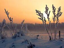 SNOW SUNSET gelo invernale campo FOTO art print poster foto bmp215a