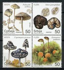 Serbia Mushrooms Stamps 2019 MNH Mushroom Fungi Nature 4v Block