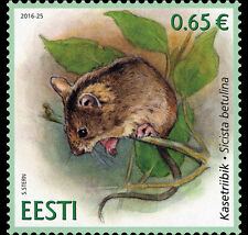 Estland / Estonia - Postfris/MNH - Estonian Fauna, Northern Birch Mouse 2016