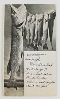 Postcard Fisherman Catch A Pike some Trout? Clear Lake Iowa 1911