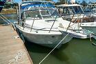 1988 Boston Whaler 27 cuddy cabin with twin Honda 250hp Outboards. Low hours.