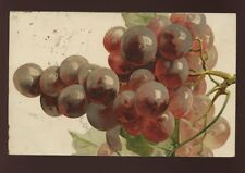 Artist C Klein GRAPES Tuck Art #6118 PPC  used 1906
