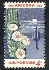 USA 1962 Cactus/Plants/Flowers/Nature 1v (n24616)