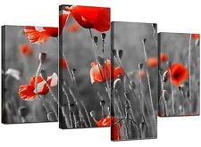 Large Red Poppy Black White Canvas Wall Art Pictures XL Prints 4135