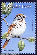 Song Sparrow, Birds, Burkina Faso MNH - C87