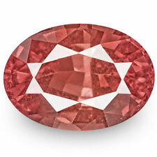 Padparadscha Loupe Clean Loose Natural Sapphires