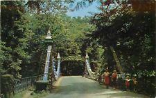 Suspension Bridge Millcreek Park Youngstown Ohio OH Postcard