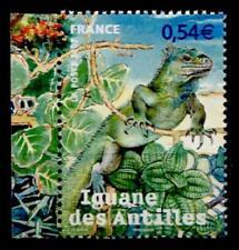 Leguan. 1W+Rand. Frankreich 2007