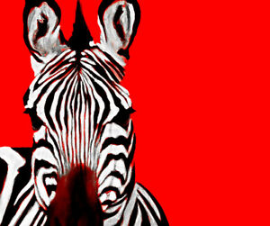 Zebra Red By Ricky Dean Art Paper or Canvas Print