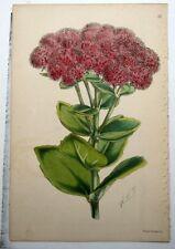 1800-1899 Art Prints
