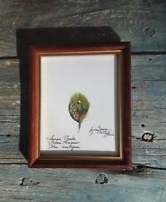 ART PAINTING, GREEN MACAW PARROT ON SMALL FEATHER, LUCIANA TRANCHINA, COSTA RICA