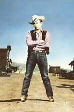 JAMES DEAN ~ COWBOY VEST 23x35 MOVIE POSTER Celebrity Icon NEW/ROLLED!