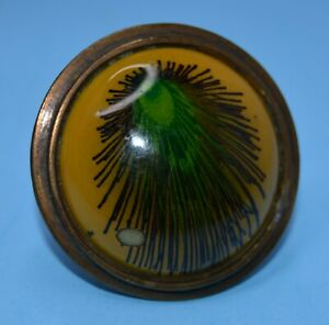"""vtg Bubble Dome Retro Mod Ring adjustable PEACOCK FEATHER 1.75"""" wide"""