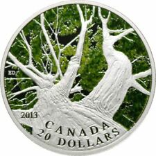 2013 Canadian Maple Leaf Canopy Spring Silver Proof Coin $20 with Box + COA